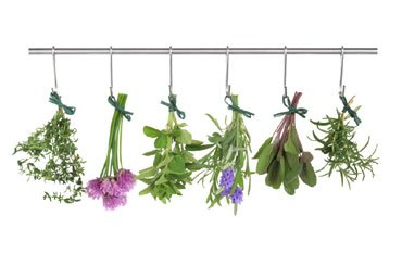 Time to Tend the Garden, and How To Use Summer Herbs