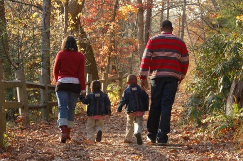 exercise_family