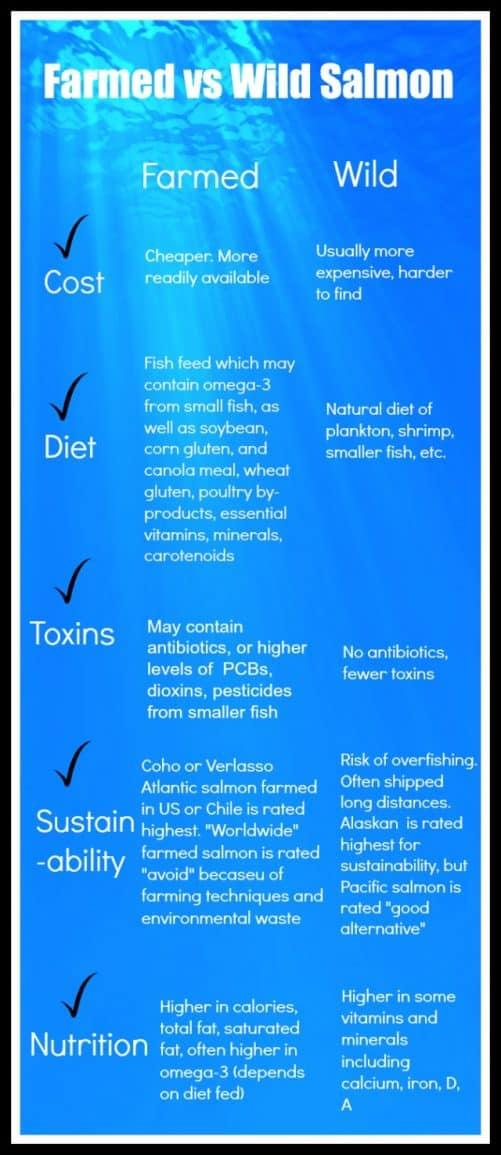 Farmed vs Wild Salmon Craving Something Healthy