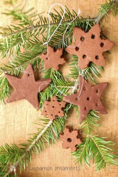Cinnamon Ornaments|Kumquat