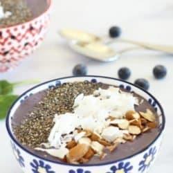 Immune Boosting Wild Blueberry Kefir Smoothie Bowl Craving Something Healthy