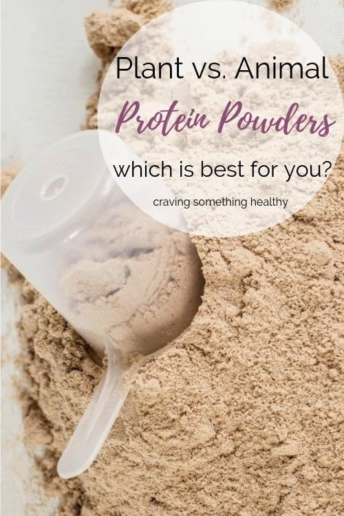 Plant vs. Animal Protein Powders: Which is Best for You? | Craving Something Healthy
