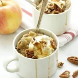 Apple Spice Protein Mug Cake