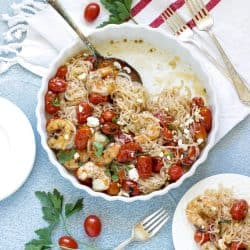 White plate of Shirataki noodles with shrimp and tomatoes on blue background